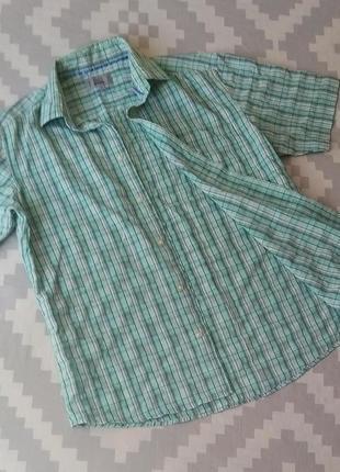 Рубашка мужская, летняя