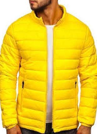 Зимняя курточка biaggini