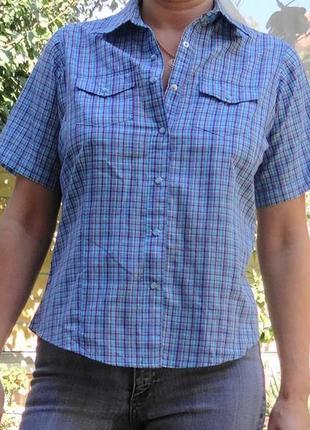 Рубашка трендовых цветов - голубого и вишнёвого!