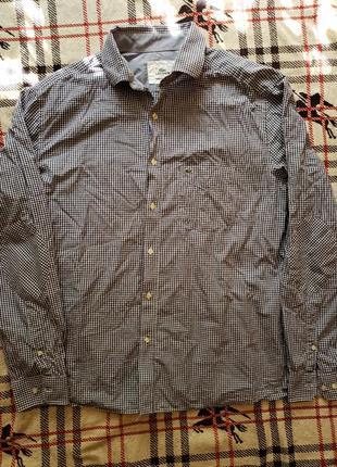 Сорочка lacoste рубашка не polo ralph lauren gucci