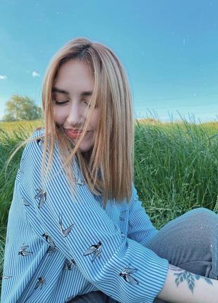 Рубашка ласточки h&m