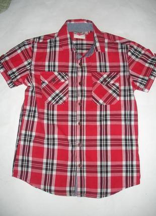 Фирменная lee cooper яркая рубашка мальчику 7-9 лет хлопок в новом состоянии