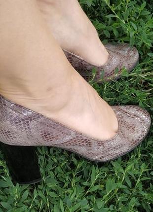 Туфли солди кожа рептилия