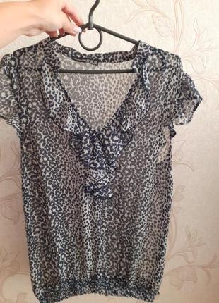 Жіноча блуза / женская  блузка