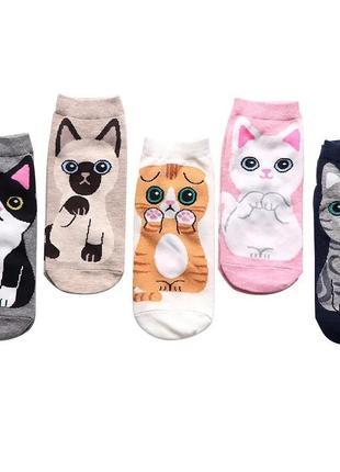Набор носков / носки с котиками / носочки с кошечками / кот и кошка
