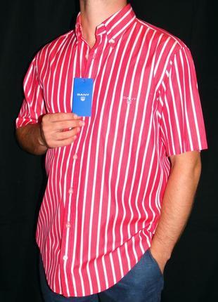 Gant шикарная брендовая вишнёвая шведка в полоску - xl - l