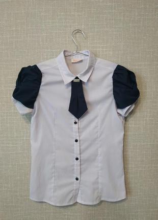 Блуза, блузка женская