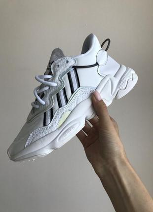 Adidas жіночі кросівки