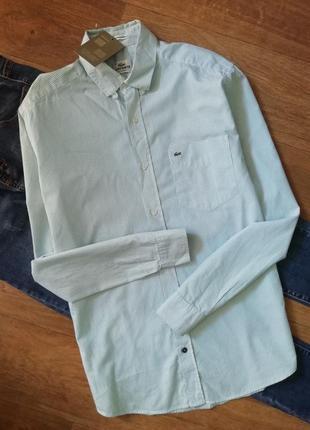 Lacoste рубашка в мятную полоску, сорочка, блузка, оверсайз, бойфренд