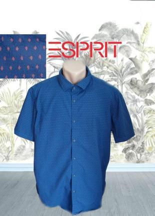 🌴🌴esprit slim fit стильная мужская рубашка короткий рукав синяя в принт xl🌴🌴🌴