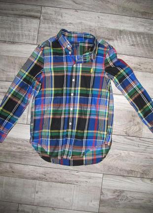 Рубашка ralph lauren оригинал на 8-9 лет - 122-134см