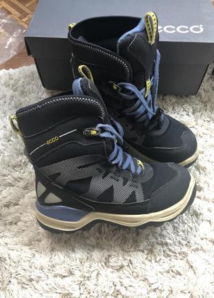 Термо ботинки сапожки ecco зима