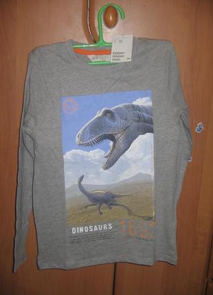 Реглан h&m с динозаврами размер 8-10лет рост 134-140