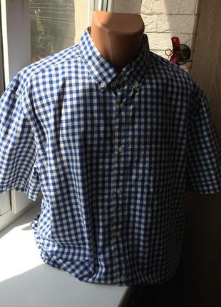 Чоловіча сорочка у клітинку