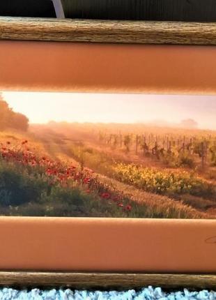 """Удивительная фотокартина """"виноградники"""""""