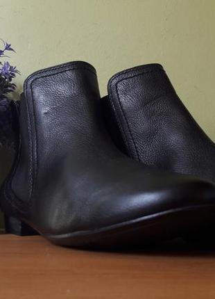Стильные женские ботинки clarks