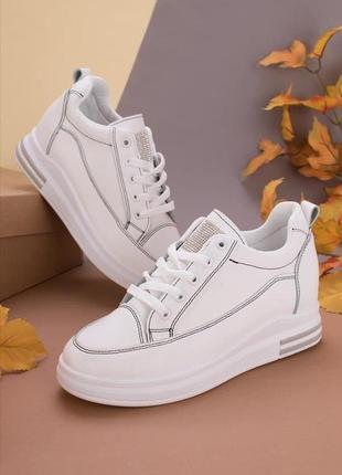 Шикарные  кроссовки-сникерсы