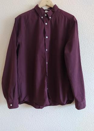 Рубашка мужская xl хлопковая