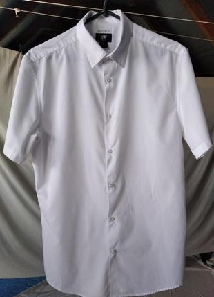 Белая рубашка h&m, размер м