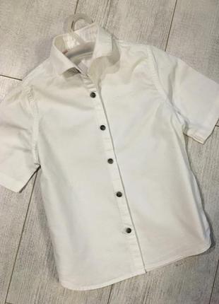 Белая рубашка некст 5-6 лет с коротким рукавом