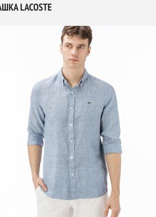 Original рубашка lacoste
