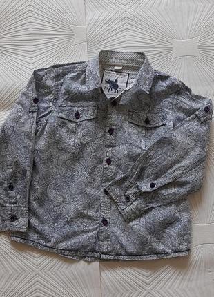 🐬 необычная рубашка из 100%хлопка