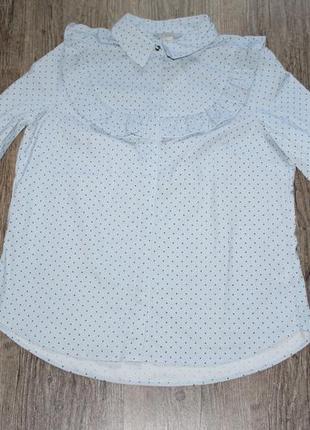 Новая идеальная блуза