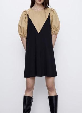 Zara нові колекції плаття