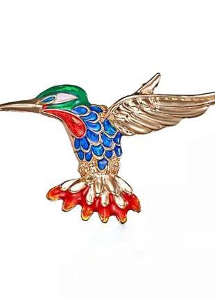 Брошь колибри - разноцветная птичка