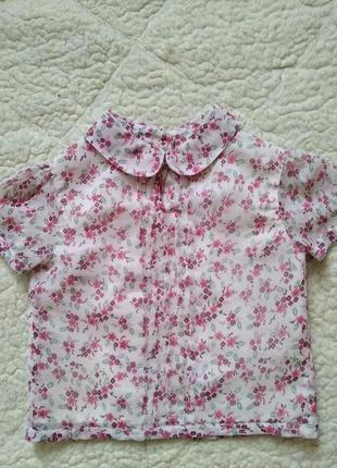 Блузка с коротким рукавом 🌺