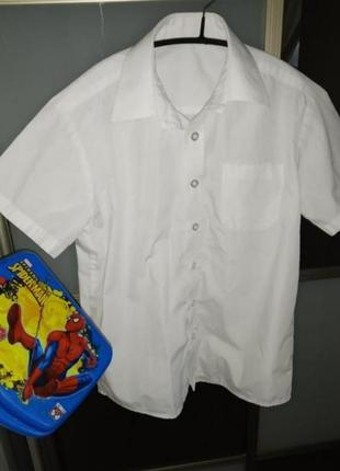 Рубашка сорочка с короткими рукавами в школу