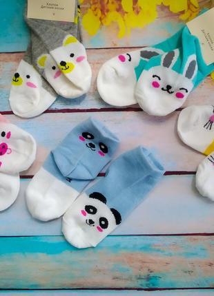 Набір носочків