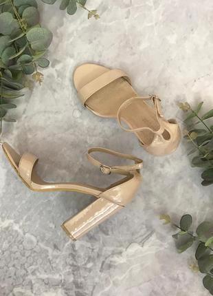 Аккуратные босоножки в базовом цвете  sh1904074 koi footwear