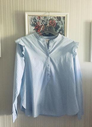 Рубашка голубая небесная в мелкий горошек