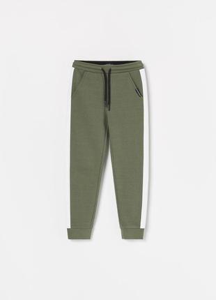 Зеленые штаны с лампасами