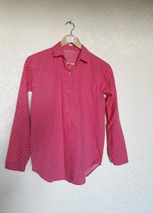 Розовая рубашка в горошек! тренд 2020-2021 !!!