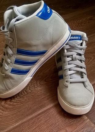 Круті кеди-кросовки adidas