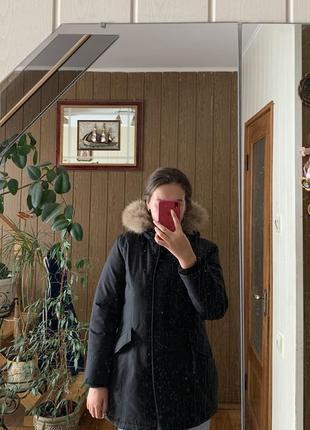 Куртки зимние енот