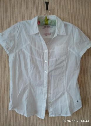 Котонова блуза