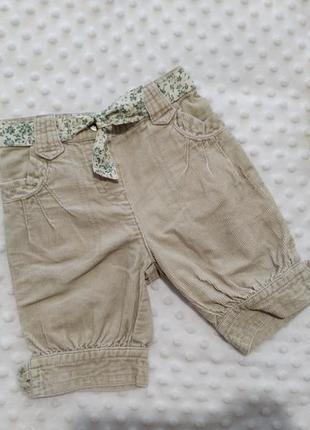 Фирменные модные шорты