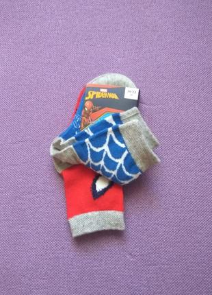 Носки шкарпетки disney lupilu19/22