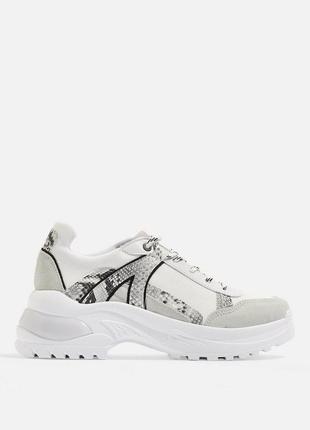 Классные кожаные кроссовки на высокой подошве с змеиным принтом