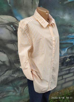 Рубашка 100%коттон в полоску,полосатая