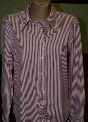 Стильная рубашка, офисная блузка