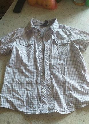Рубашка116р