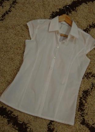 Белая офисная блуза bhs