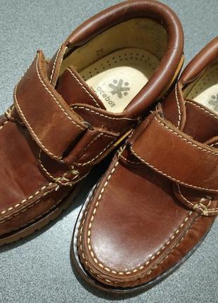 Кожаные туфли, лоферы, топсайдеры, мокасины  acebos