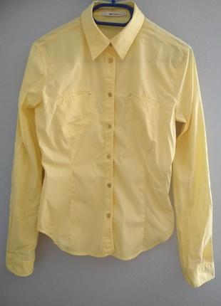 Хлопковая рубашка gas