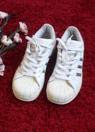 146113ea7a6c Кроссовки adidas superstar белые-38р Adidas, цена - 550 грн ...