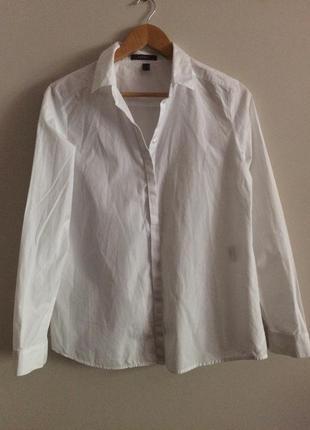 Классическая белая рубашка / 100% cotton